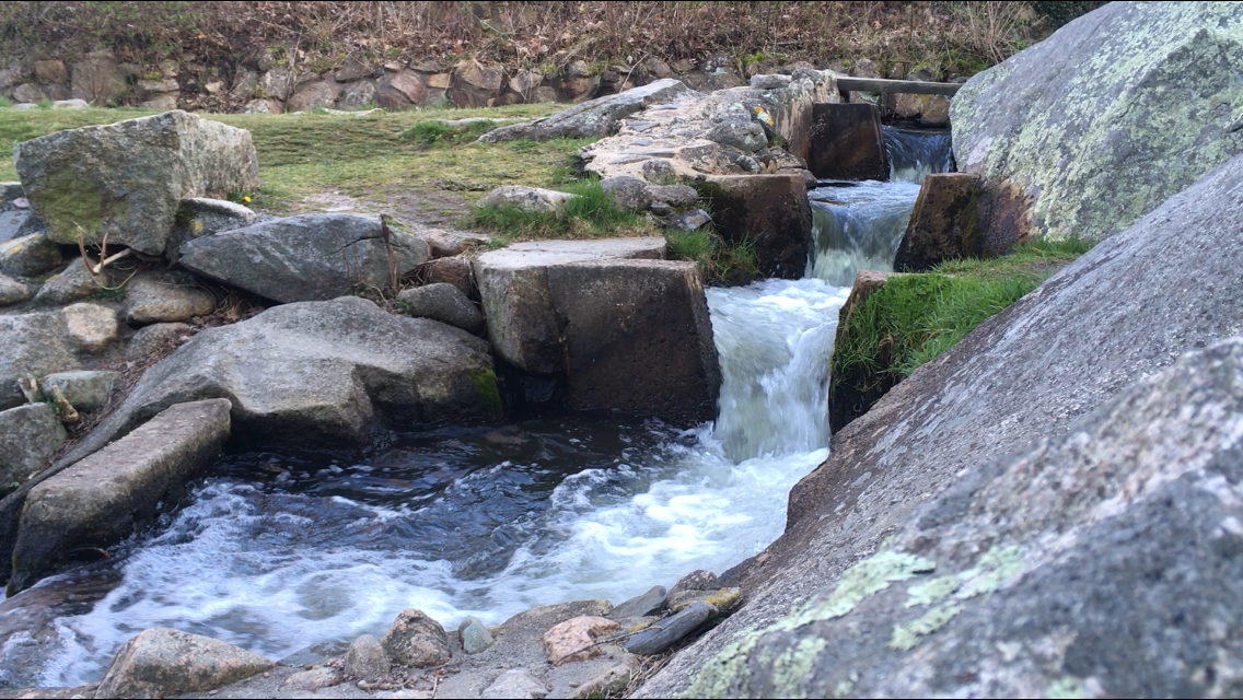 Brewster Herring Run